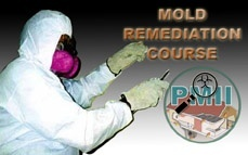 Mold Remediation Certification Course Online Training & Certification